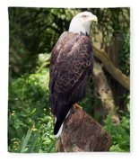 Eagle Portrait Fleece Blanket