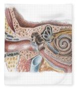 Ear Anatomy Fleece Blanket