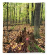 Early Autumn Woods Fleece Blanket