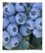 Early Blue Blueberries Fleece Blanket