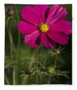 Early Dawns Light On Fall Flowers V 03 Fleece Blanket