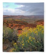 Early Evening Landscape At Arches National Park Fleece Blanket