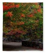 Early Fall At Talimena Park Fleece Blanket