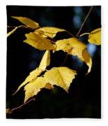Early Fall Of  Downy Birch Fleece Blanket