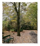 Earth Day Special - Bench In The Park Fleece Blanket