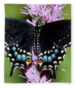 Eastern Black Swallowtail Butterfly Fleece Blanket