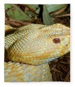 Eastern Diamondback Rattlesnake Albino Fleece Blanket