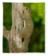 Eastern Gray Squirrel Fleece Blanket