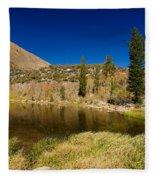 Eastern Sierras 18 Fleece Blanket