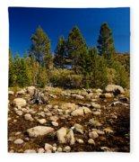 Eastern Sierras 21 Fleece Blanket