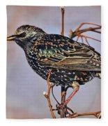 Common Starling Fleece Blanket