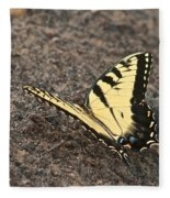 Eastern Tiger Swallowtail 8564 3241 Fleece Blanket