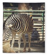 Eating Zebra Fleece Blanket