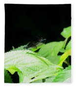Ebony Jewelwing Male Fleece Blanket