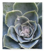 Echeveria With Water Drops Fleece Blanket