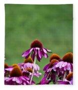 Echinacea Purpurea Fleece Blanket