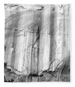Echo Canyon Bw Fleece Blanket