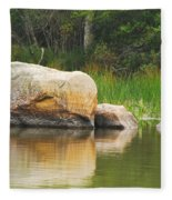 Echo Lake Reflection Fleece Blanket
