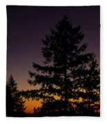 Eclipse In Yosemite Fleece Blanket