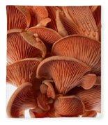 Edible Fungi 2 Fleece Blanket