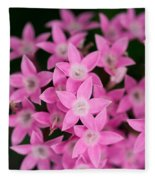 Egyptian Star Flowers Or Penta Fleece Blanket