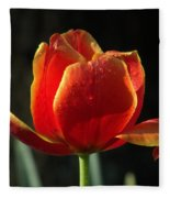 Elegance Of Spring Fleece Blanket