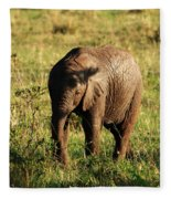 Elephant Calf Fleece Blanket