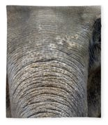 Elephant Close Up 1 Fleece Blanket