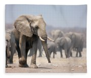 Elephant Feet Fleece Blanket