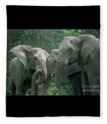 Elephant Ladies Fleece Blanket