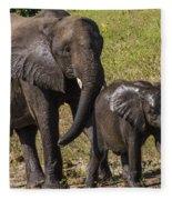 Elephant Mom And Baby Fleece Blanket