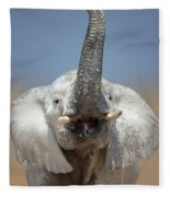 Elephant Portrait Fleece Blanket