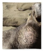 Elephant Seal Fleece Blanket