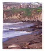 Elephant Seals On The Beach, San Luis Fleece Blanket