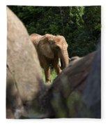 Elephant Spotted Between Rocks Fleece Blanket