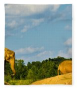 Elephants Among The Rocks. Fleece Blanket