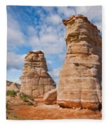 Elephant's Feet Rock Formation Fleece Blanket