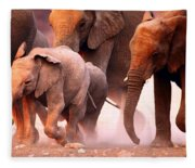 Elephants Stampede Fleece Blanket