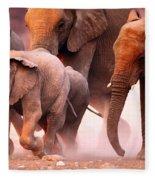 Elephants Stampede Fleece Blanket