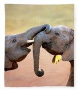 Elephants Touching Each Other Fleece Blanket