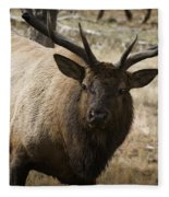 Elk-animals-image Fleece Blanket