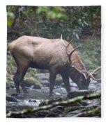 Elk Drinking Water From A Stream Fleece Blanket