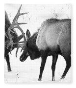 Elk Fighting Black And White Fleece Blanket
