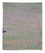 Elk On The Plains 1 Fleece Blanket