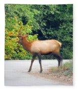 Elk Right Of Way Fleece Blanket
