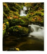 Emerald Falls In Columbia River Gorge Oregon Usa Fleece Blanket