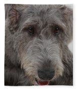Irish Wolfhound IIi Fleece Blanket