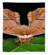 Emperor Gum Moth - 6 Inch Wing Span Fleece Blanket