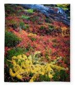 Enchanted Colors Fleece Blanket
