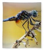 Enchanting Dragonfly Fleece Blanket